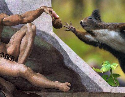 آدم داروین را میفهمد